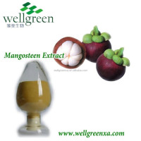 GMP factory mangosteen rind extract powder