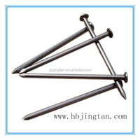 sell high quality bright common iron nail factory in Shijiazhuang Hebei China