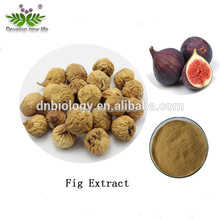 Hot Sell Fig Extract Powder 5%-20% Isoflavone Fig Leaf Extract/Fig Extract/Fig Powder