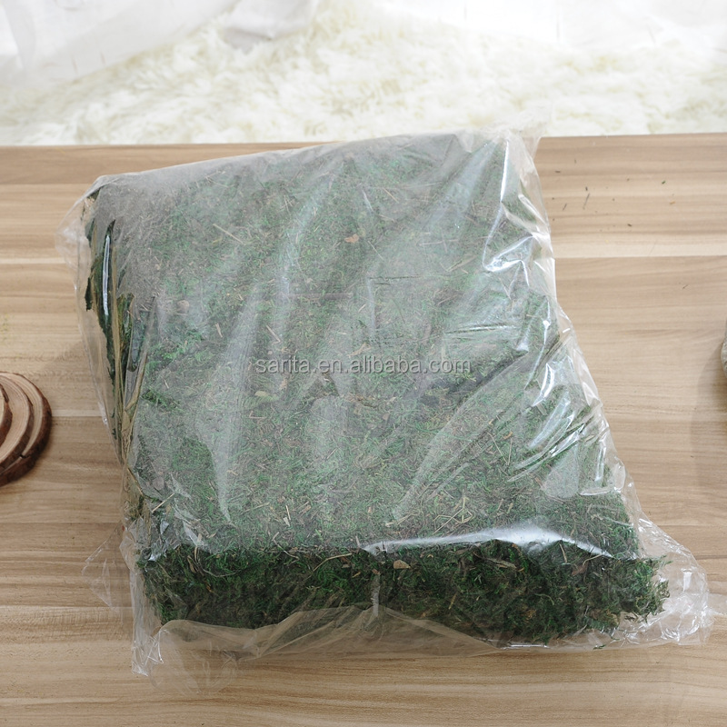 Green Artificial Moss Cheaper Factory Supply Handmade Preserved Moss For Decoration
