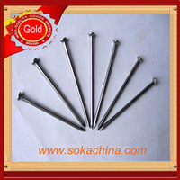 2013 hot sales common wire nails with best price factory sales
