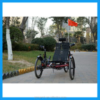 electric folding bike tricycle for traveling