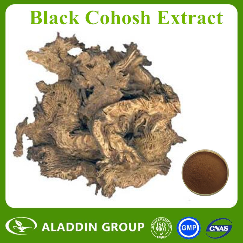 Wholesale ISO Certificated Black Cohosh Extract