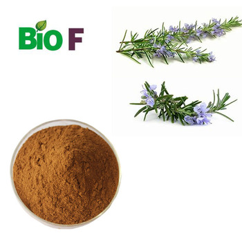 Pure Natural Rosemary Extract Powder For Cosmetic grade
