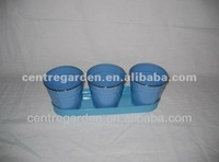Stainless steel rim tray with 3 blue flower pot