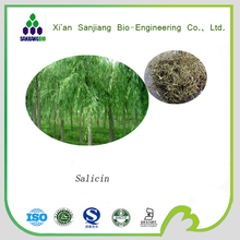100% Pure natural white willow bark extract/white willow bark extract salicin/white willow bark extract salicin 98%