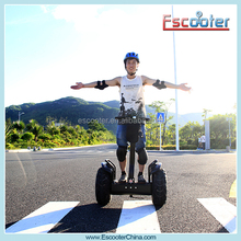 New arrived off-road electric chariot 2 wheel electric scooter trailer with Necessities Vehicle