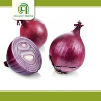 all kinds of fresh red onion in china