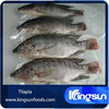 Tilapia Fish Wholesale Price