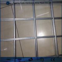 Stainless Steel Welded Wire Mesh Panel for Construction Wire Mesh