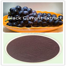 Natural Black Currant Extract