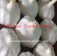 Dehydrated/Dried Fresh Garlic Supplier in China For Sale