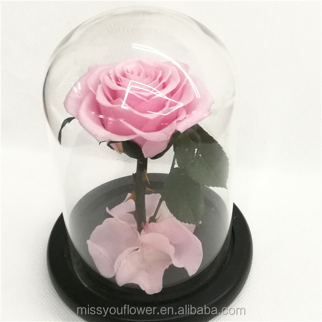 Wholesale preserved roses long lasting rose flowers in glass dome for Saint Valentine's Day
