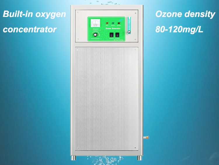 Oxygen source corona discharge ozone generator for water treatment