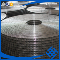 haotong high quality 3/4 inch square screen welded wire mesh