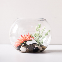 13cm 5 inch diameter Mini Glass Terrarium For Miniature Plant / Flat Bottom Ball For Succulent Plant