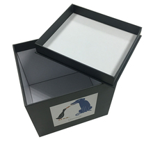 China Manufacture Cardboard Gift Box for Cup Packaging