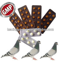pigeon medicines tablet for race