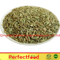 Chinese Fennel seeds 80%green up