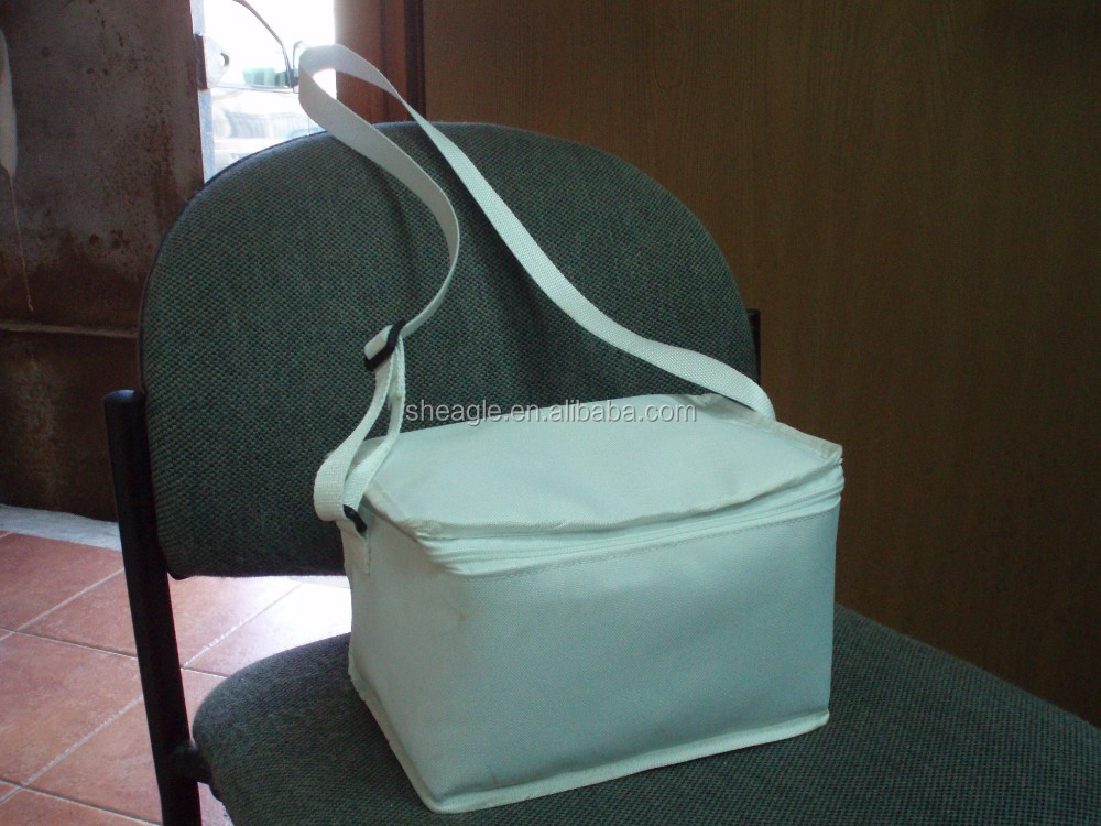 Thermal lunch cooler bag for hot food