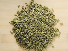 Foeniculum Vulgare extract / Fennel seed extract powder 5:1