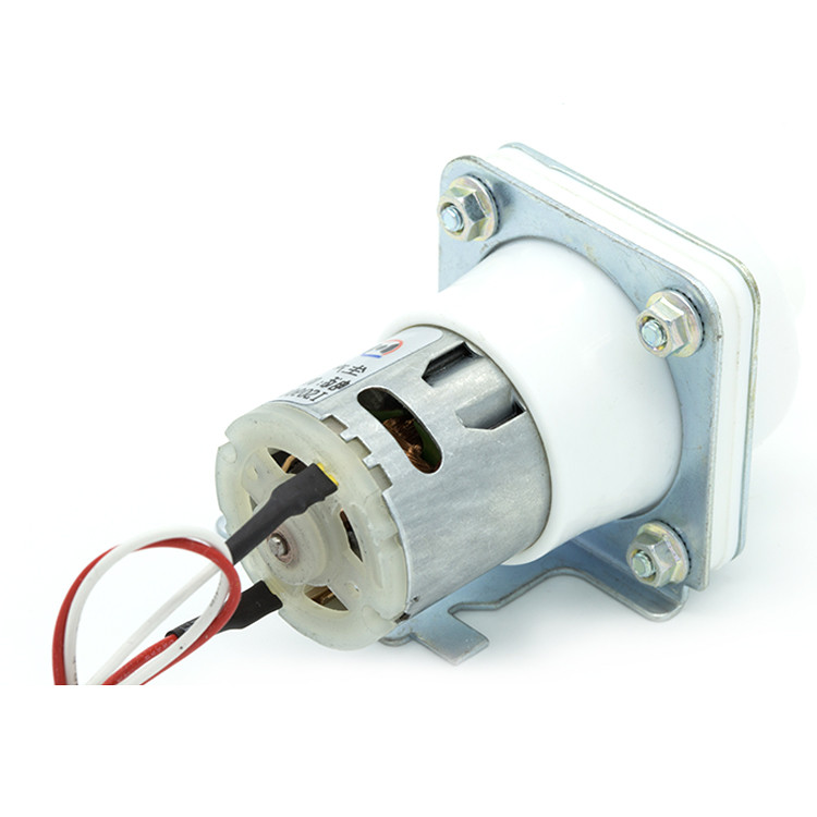 Electric Water Pump Food Grade 12v Water Pump With High