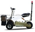 electric golf cart(SX-E0906-6A)