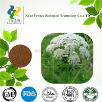 2014 dry herb Natural Plant Extract Common Cnidium Fruit P.E.