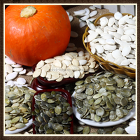 Hulled Snow White Pumpkin Seeds New