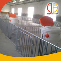 Poultry equipment galvanized sheep/goat/pig farm gates(heavy duty)