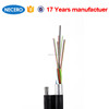Outdoor Optical Cable GYTC8A Figure 8