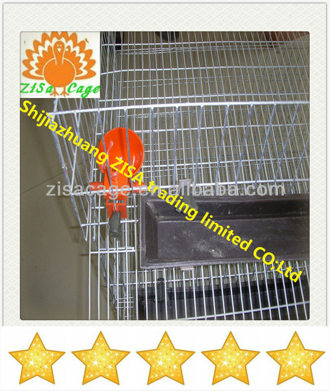 zambia automatic galvanized quail cage suppilers