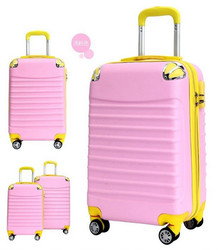 travel trolley luggage bag/flight case
