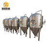 mini beer brewery equipment 500l fermenter home brew fermenter