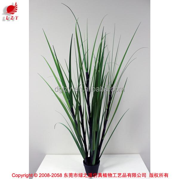 Grossiste plante verte d int rieur acheter les meilleurs for Plante interieur en ligne