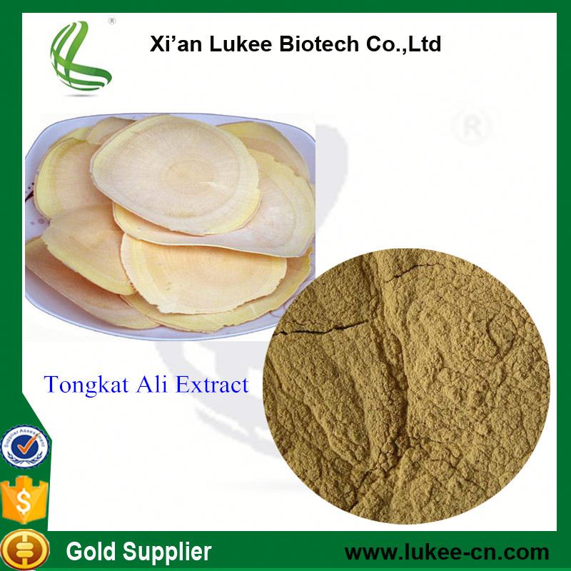 Chinese Herb Medicine for Penis Erection / tongkat ali root extract 200:1