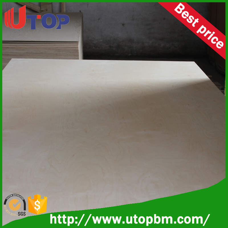 best plywood hot press,EO glue plywood/brich faced plywood for construction