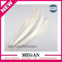 wholesale bulk natural tail plume silver pheasant feathers for sale