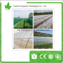 100% Virgin HDPE Anti insect net , pe agricultural insect proof net
