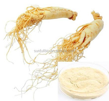 Ginseng Extract Ginsenosides for Functional food