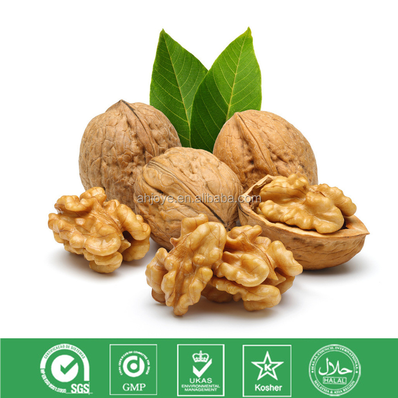 Walnut oil in high quality GMP manufacturer natural plant extract