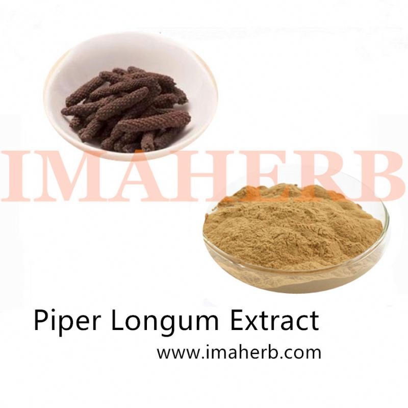 High Quality Piper nigrum L Extract
