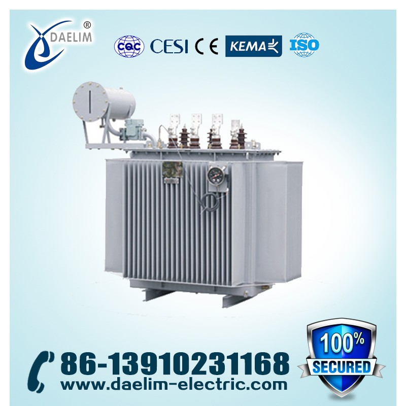 20kv 400kva Dyn11 Oil-immersed Three-phase Electric Distribution Transformer