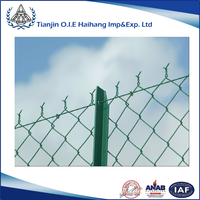 Galvanzied Chain link Wire Fence/ PVC Coated Wire Fence
