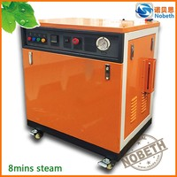 Professional Automatic 54KW Electric Steam Boiler with Steam Iron
