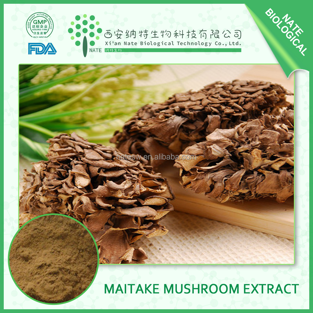 china products pure Natural Fruit body Part Use Maitake Mushroom Extract 10:1 Maitake Mushroom Polysaccharides
