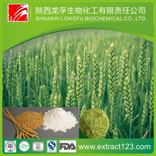 Factory supply barley malt extract