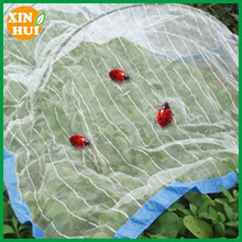Garden Organic Net Crop Veg Protection Various Sizes Anti Insect Netting/insect proof net for gardens