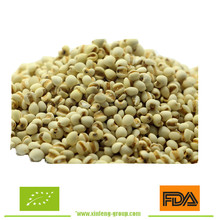 Organic Chinese Job's Tear,coix seeds