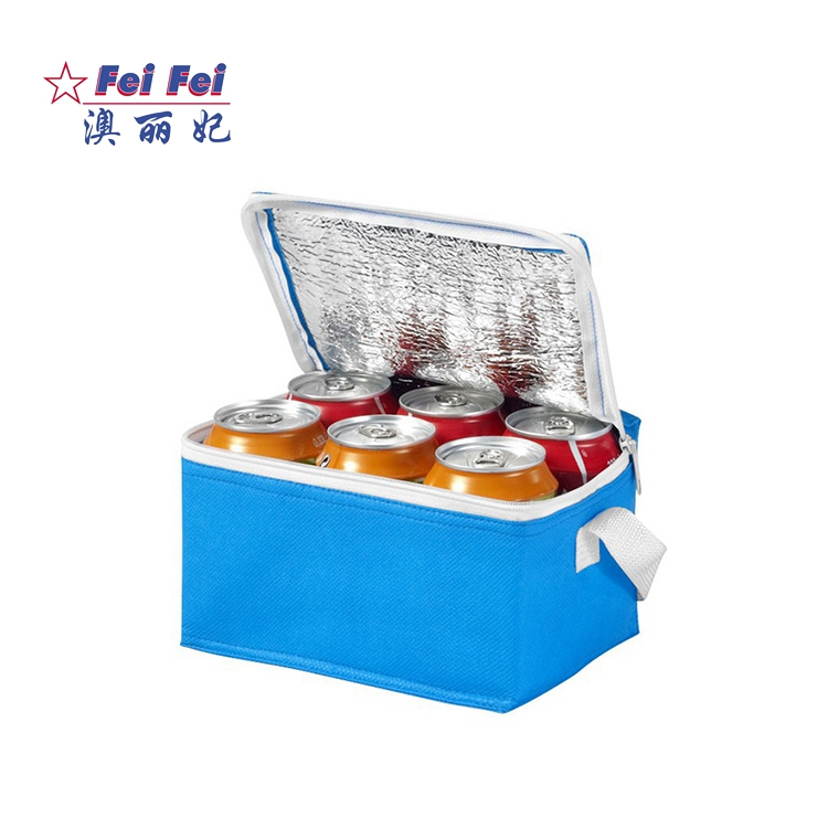 Low Price durable pouch school non woven water bottle beer thermal lunch cooler bag for woman